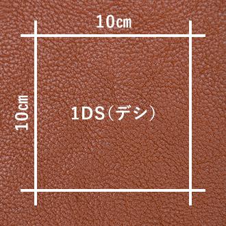 1DS = 100㎠
